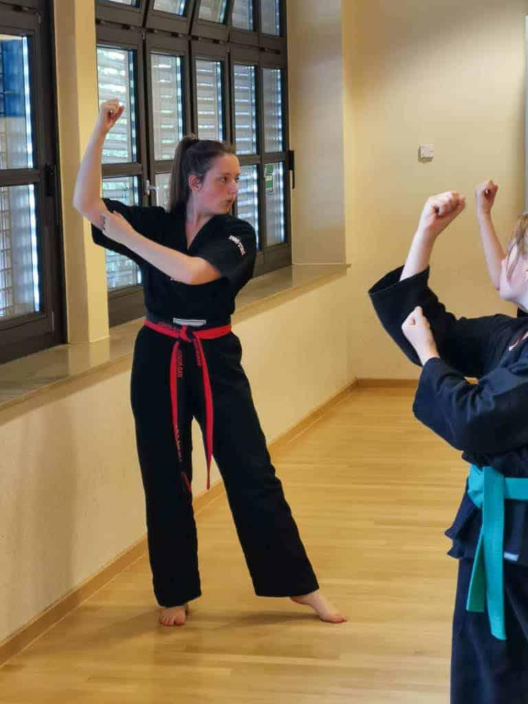 Katalehrgang Shotokan